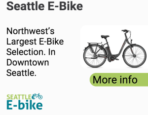 Seattle E-Bike Google AdWords